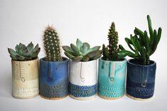 Little succulent or cacti pot in matt turquoise glaze