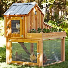 Raise backyard chickens safely and easily in this roomy, yet compact cedar chicken coop / run / garden planter. Chicken Barn, Chicken Coop Run, Portable Chicken Coop, Backyard Chicken Coops, Building A Chicken Coop, Chicken Runs, Chickens Backyard, Small Chicken, Chicken Feed