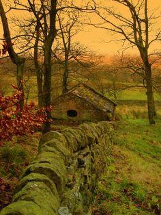Mossy Ancient Stone Fence, Lancashire, England