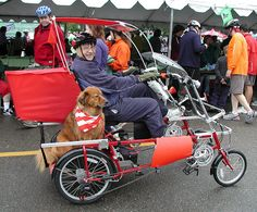 Dog biking, via Flickr.