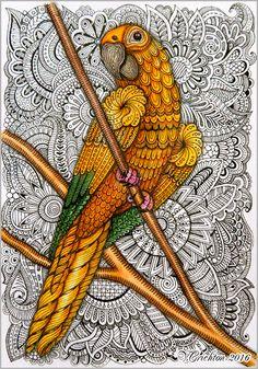 Zentangle stylized PARROT illustration. Попугай в зентанглах. Gel pen, watercolor. Author Viktoriya  Crichton.  ZentangleHouse, zentangle parrot patterns, zendoodle, zentangle bird patterns, zentangle animal, zentangle art, doodle parrot, zentangle inspired, doodle art, parrot drawing, zentangle, abstract, zenart, zentangle birds, doodle frowers, artdrawing, mydrawing, mypicture, zentangle stylized Bird  illustration