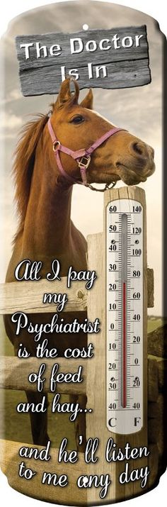 The Doctor Is In...Thermometer with horse image