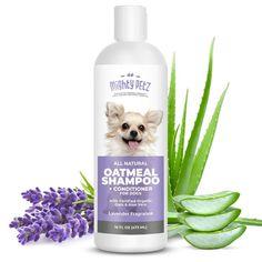 Best Shampoo for a Labradoodle! (2020) 17 Natural Dog Shampoo, Natural Shampoo And Conditioner, Pet Shampoo, Smelly Dog, Oatmeal Shampoo, Dry Sensitive Skin, Dry Skin, Lavender Scent, Pet Grooming