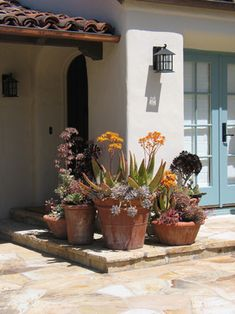 Mediterranean Home Shady Garden Design Ideas, Pictures, Remodel, and Decor - page 11