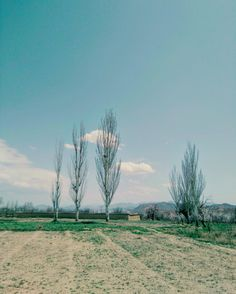 The rural view - Tarq e Rood in Natanz