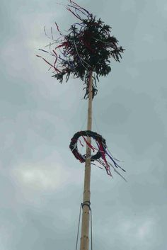 Máj. Strom života, kde sa mužský prvok údu prevlieka ženským prvkov venca s tryskom zelenej sily na vrchole.