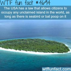 Weird laws of the USA - WTF fun facts Wow Facts, Wtf Fun Facts, True Facts, Funny Facts, Funny Memes, Random Facts, Crazy Facts, Strange Facts, Did You Know Facts