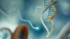 DNA clamps detect cancer