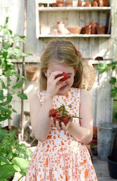 room seven spring summer 2017 Strawberry Farm, Strawberry Picking, Strawberry Patch, Strawberry Fields, Jam Tarts, Dolly Dress, Beautiful Farm, Wild Strawberries, Summer Girls