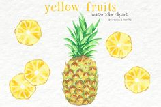 Watercolor Clip Art - Yellow Fruit by Maria B. Paints on @creativemarket