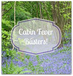 Some ideas for cabin fever-busting workouts!