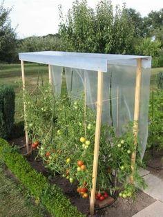 26 Ideas Diy Garden Planters Grow Tomatoes For 2019 Tomato Trellis, Garden Trellis, Garden Planters, Garden Beds, Small Vegetable Gardens, Vegetable Garden Design, Design Jardin, Greenhouse Gardening, Garden Shop
