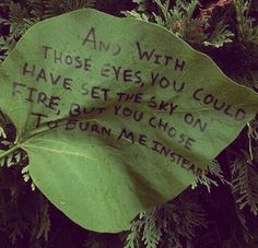 quotes, green, and leaves image Aesthetic Colors, Quote Aesthetic, Aesthetic Green, Nature Aesthetic, Aesthetic People, Aesthetic Pictures, Dark Fantasy, Connie Springer, Yennefer Of Vengerberg