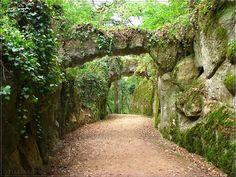 Pelos caminhos da Serra de Sintra