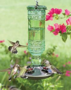 Hummingbird Feeder - I would love several of these around my garden and have hummingbirds flutter around :)