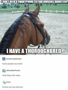 lol I think only equestrian understand