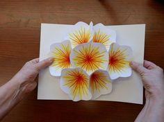 Tuto pour carte pop up bouquet Plus