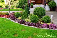 Front yard landscaping garden ideas