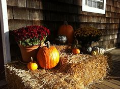 Outdoors Fall Decorations
