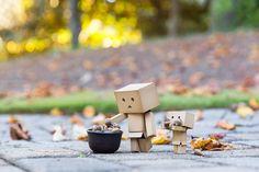 When it's Autumn Cardboard Camera, Amazon Box, Danbo, Usb Flash Drive, Autumn, Fall, Place Card Holders, Outdoor Decor, Acorn