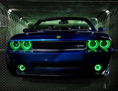 ORACLE Halo Kits Dodge Challenger - Ultraviolet purple on order How about Purple Car, with green lights?