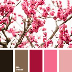 Color Palette #2883 (Color Palette Ideas)