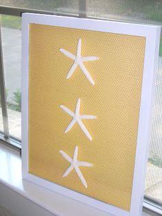 DIY Starfish Specimen Art | Crafting Up My World