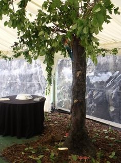 Artificial trees made from various materials, artex, expandable foam and latex bark moulds. Fresh leaves wired to aluminium rod branches