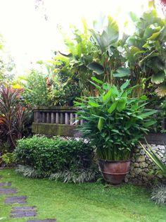 Bali garden design on pinterest bali garden tropical for Bali garden designs pictures