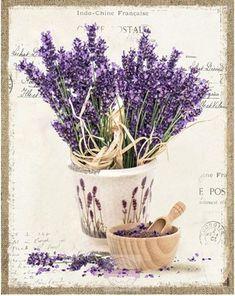 Risultati immagini per provence obrazy Lavender Room, Lavender Cottage, Lavender Flowers, Lavander, Paper Napkins For Decoupage, Decoupage Vintage, Decoupage Paper, Chicken Painting, Antique Pictures