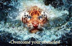 Just do it!!! #Obstacles #Motivation #Inspiration #Hurdles #Goal