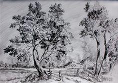 Landscape drawing. Drawing of trees by the river. Rysunek drzew nad rzeką. Rysunek krajobrazu nizinnego