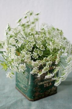 old tea tin and baby's breath(?)