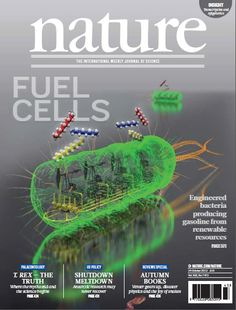 Nature, Volume 502 Number 7472. In the cover graphic, fossil oil production (top) contrasts with the metabolic route. (Cover: Yong Jun Choi & Sang Yup Lee)