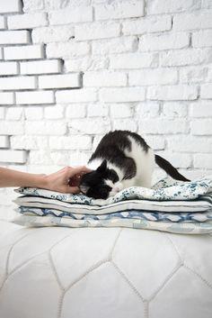 DIY cat bed   Designlovefest