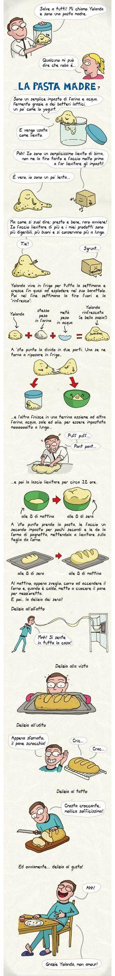 Prepara la pasta madre in maniera simpatica
