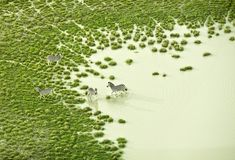 Zack Seckler | Aerial Botswana