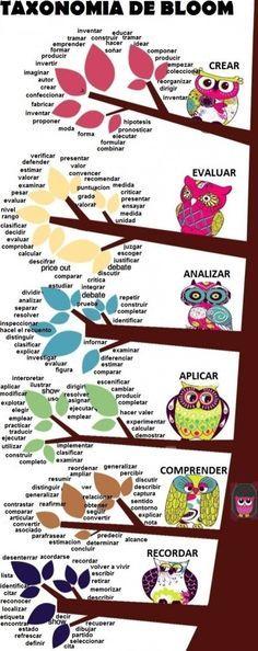 Resultado de imagen de taxonomia de bloom buhos