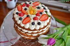 Tort de morcovi cu crema de mascarpone si fructe - OurDailyFood Cheesecake, Desserts, Mascarpone, Tailgate Desserts, Deserts, Cheesecakes, Postres, Dessert, Cherry Cheesecake Shooters