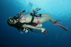 Scuba Diving Gear, Swimming Diving, Cave Diving, Underwater Photos, Underwater World, Underwater Photography, Scuba Girl, Womens Wetsuit, Windsurfing