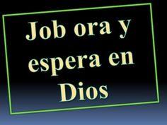 El consuelo cristiano está en Jesús y no en las palabrerías, dijo el Papa