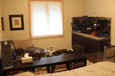 Rat Cage, Playpen, Rats, Vanity, Mirror, Animal, Furniture, Diy, Home Decor