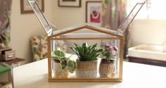 IKEA's mini-greenhouse lets you grow your favourite plants all year roundNow that growing season is over and garden-sourced mojitos will no longer be available, the mini-greenhouse really is an...