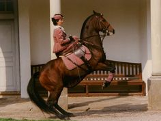 High school classical dressage in a sidesaddle.