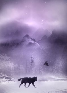 201 Best Raven And Wolf Art Images Images Ravens Crows Ravens