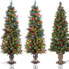 5FT CRESTWOOD SPRUCE ENTRANCE TREES | Get Organized  #holidaytree #holidaydecor