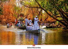 Fé sobre as águas - Brasilidade - Círio de Nazaré