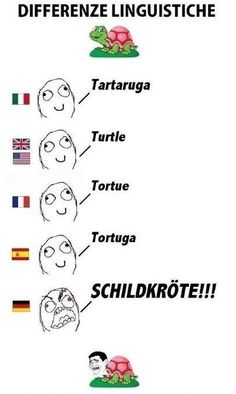 Resultado de imagem para german comparison to other languages