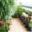 ¿Qué es un huerto urbano ecológico y qué beneficios te aporta? ecoagricultor.com