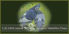 Çok Etkili inşirah Suresi ile Sevgi ve Muhabbet Duası